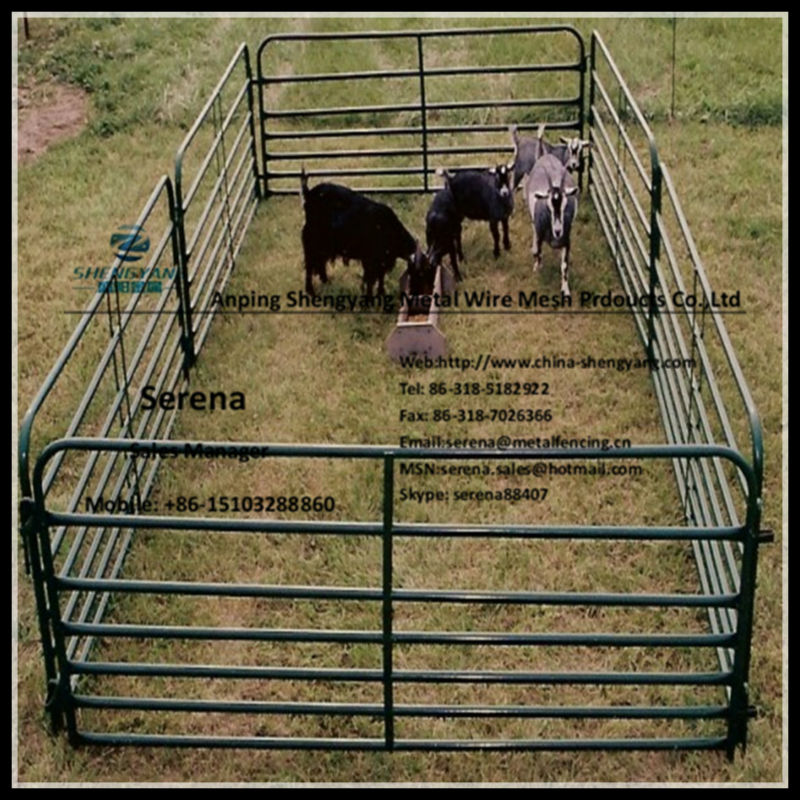 sheep fence panels / yard panels /farming panels (Direct Factory)