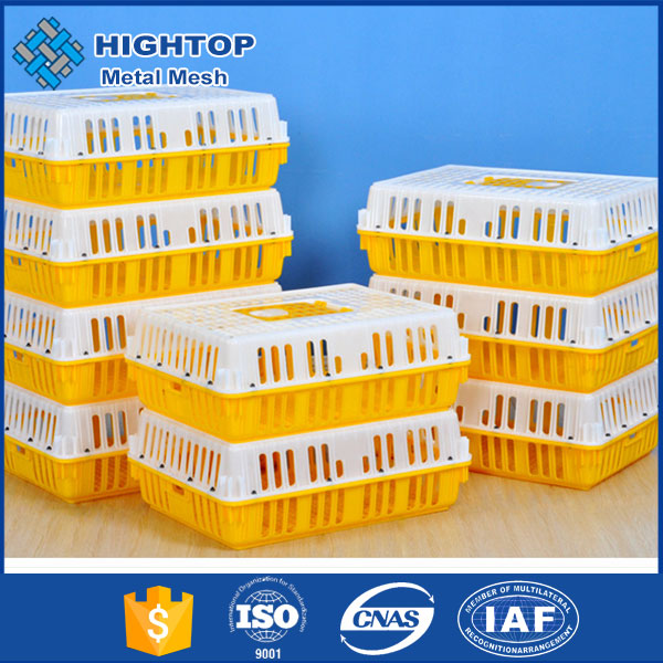 Alibaba China plastic transport crate for baby chick for laying hens