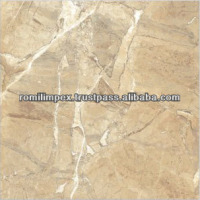 Digital floor ceramic tile