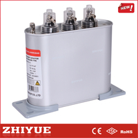 ZHIYUE BSMJ0.45-6-3 capacitor battery
