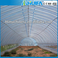 Energy Saving Anti-fog Large Used Commercial Arch Design Plastic Film Greenhouse