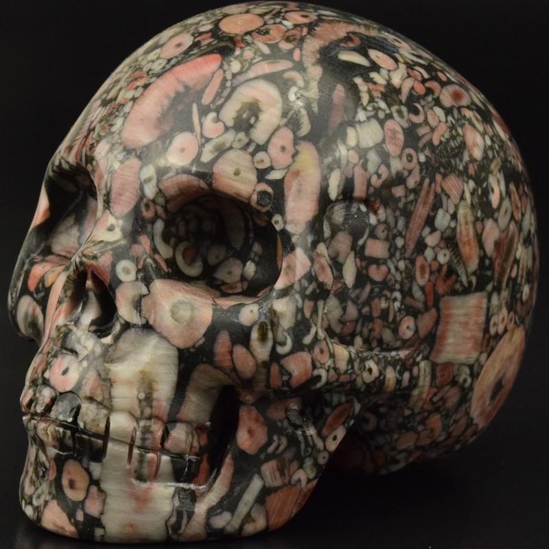 2 inch natural carved Crinoid Fossil Jasper gemstone skull for sale