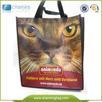 Most popular useful non woven shopping bag with printing