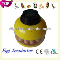 Egg Incubator Small For Poultry DFI005