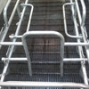 Agriculture Machinery Equipment Gestation Crate