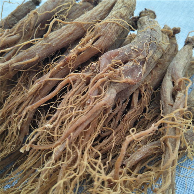 fresh red ginseng root (4).jpg