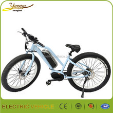 250w Mid motor fat tire mountain electric bike,36v Samsung battery cheap mountain electric bike