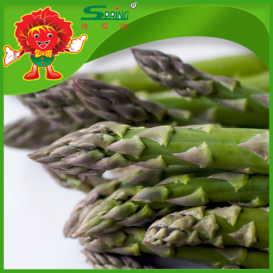 asparagus supplier bulk fresh fresh fruits and vegetables