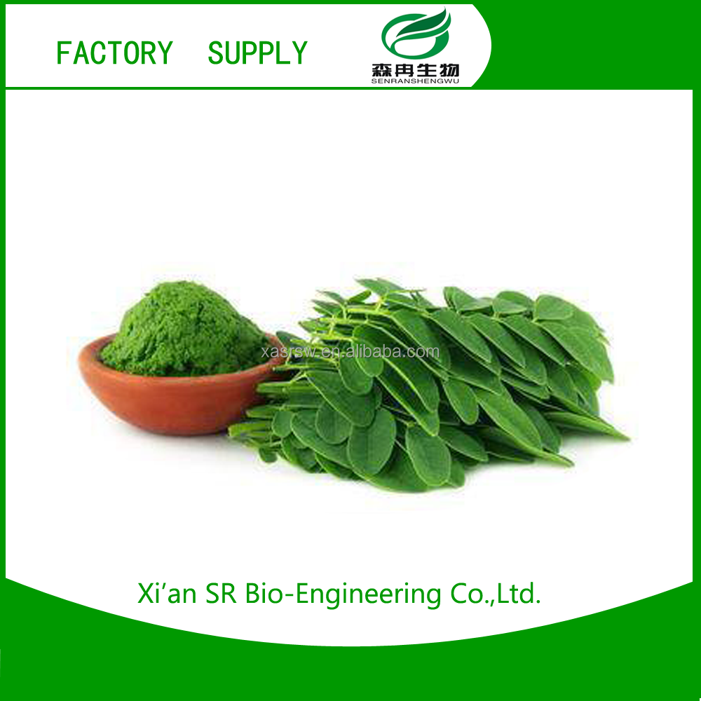 New product 2016 High Quality Herb plant extract ingredient additive moringa seed extract with high quality