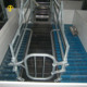 High Quality Hot Dip Galvanized Pig Farrowing Cages for Sale