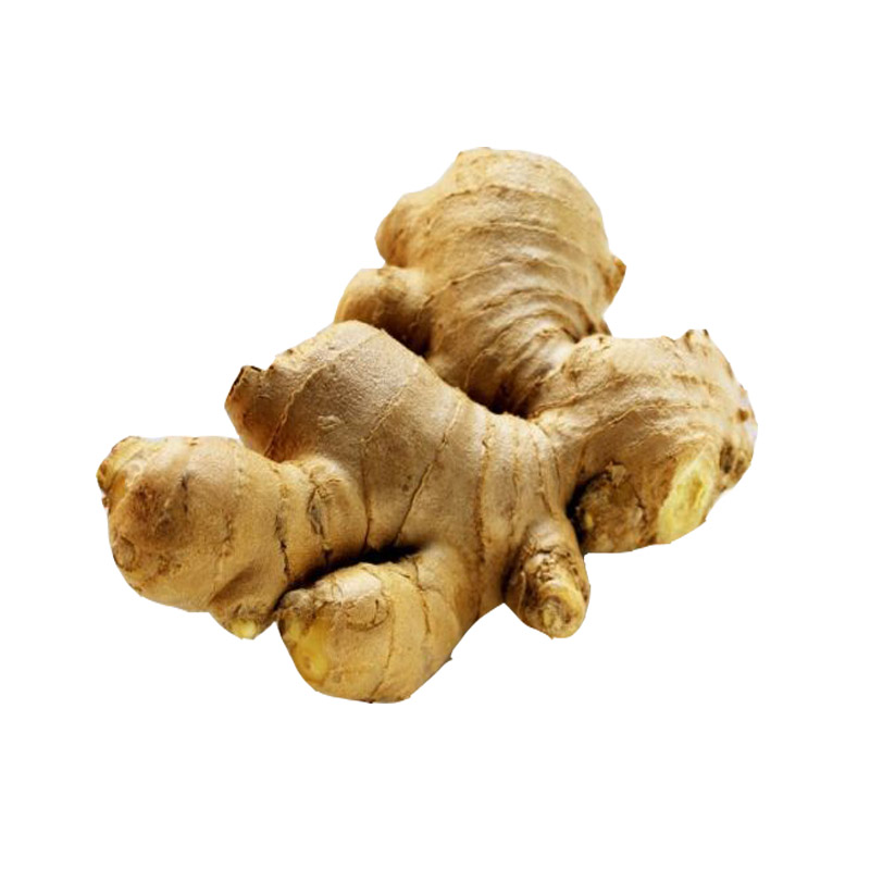 Chinese fresh ginger air dried ginger