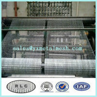 low chicken wire mesh roll/ galvanized chicken fence made in China