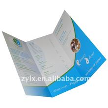 design and printing colorful folded flier