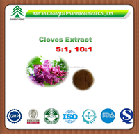 GMP factory supply Hot sale high quality Clore Flos Caryophylli