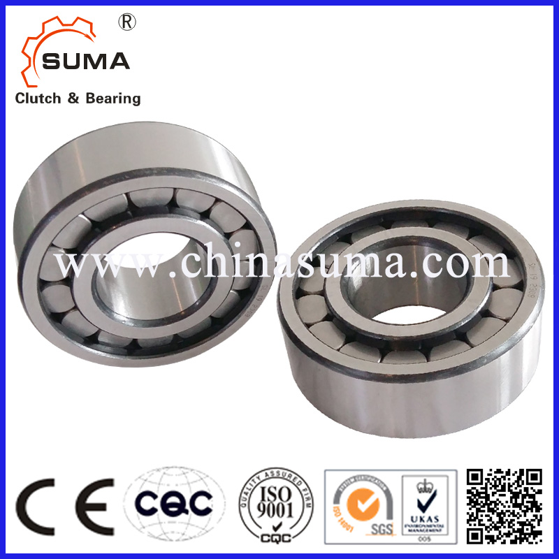 All Type Of Bearing SL182988 Full Complement Cylindrical Roller Bearing