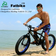 fat bike, promotion 24v lithium battery high power electric bike