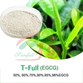 Green tea extract 80% Catechin / 60% EGCG