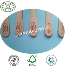 Birch wood ice cream sticks with logo