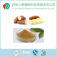 ISO&KOSHER&HALAL certificated yacon extract powder
