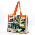 Factory eco-friendly durable handled laminated pp non woven shopper bag