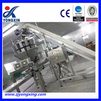 Automatic Weighting and Packing Machine