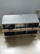 Egg Laying Nest Poultry Farm Automatic CHicken Nest Boxes sale