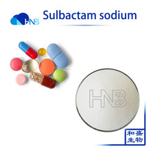 GMP Manufacture supply Sterile 98% Sulbactam sodium with wholesales price 69388-84-7