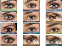 2016 whloesale price Best Hot selling latest 12 crazy colors Contact Lens freshlook lenses