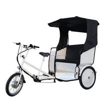 6 Speed Three Wheel Electric Tricycle with Passenger Cabin, Battery Powered Velotaxi Tricycle