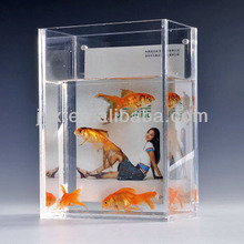 New Decorative Square Acrylic Bowl/acrylic water tank with photo frame
