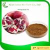 100% natural pomegranate bark extract powder in bulk