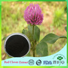 High Quality Natural Red Clover Extract 8%