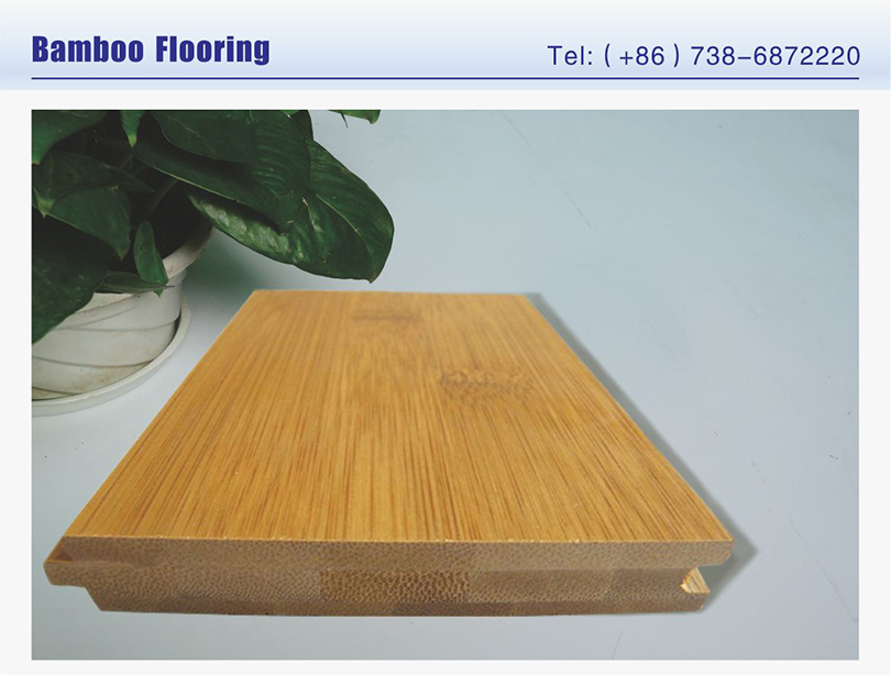 Eco forest bamboo flooring znsj factory buy eco forest for Eco friendly bamboo flooring