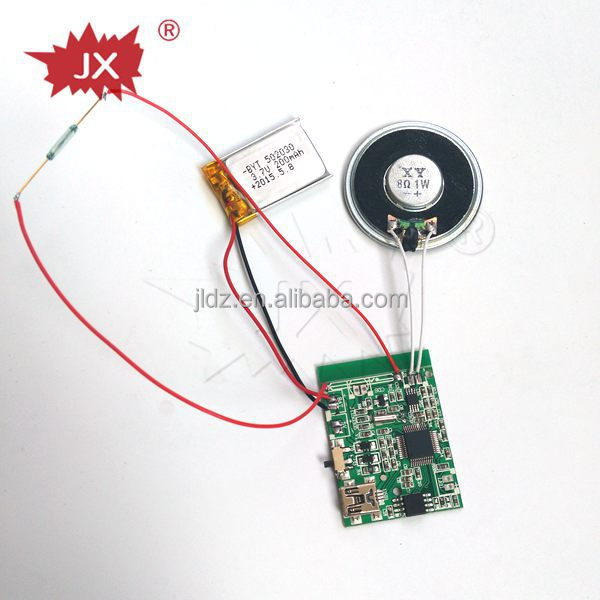 USB MP3 voice recording module with custom message/music/melody sound chip