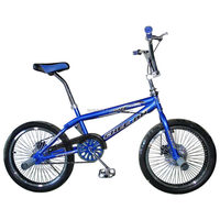 The Newest good quality bmx fashion popular freestyle kids bike (TF-FSB-016)