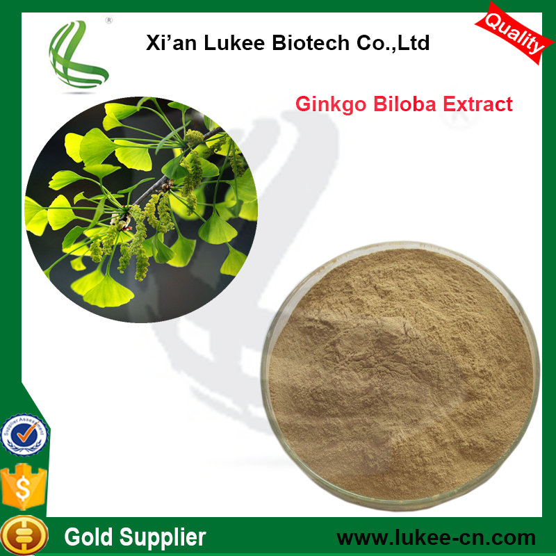 100% Natural Ginkgo Biloba Extract Flavone 24%+Lactones 6%, Ginkgolic Acid 5ppm
