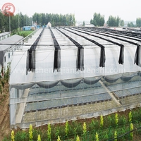 Multi Span Industrial Agricultural Plastic Greenhouses
