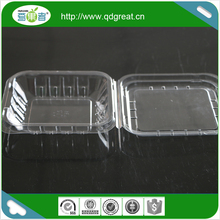 Large Pet Plastic Blueberry Fruit Container Trays