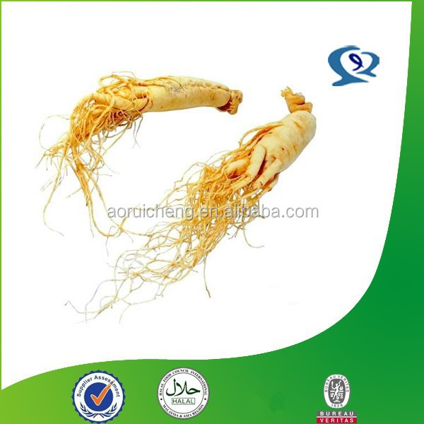 high quality korean red ginseng extract powder