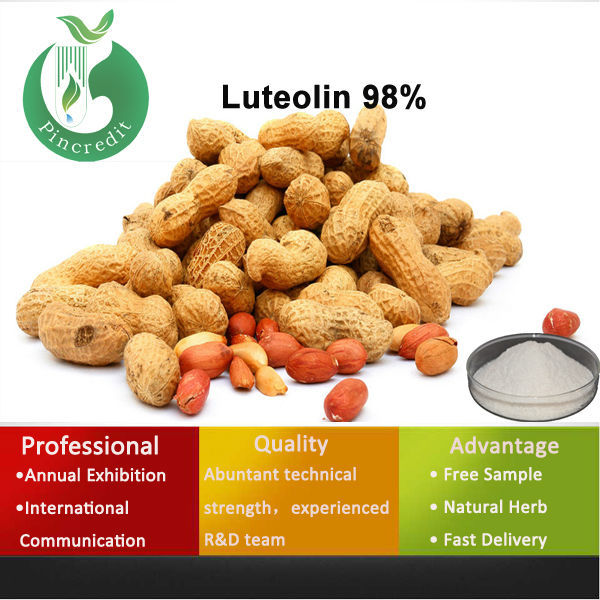 Pure luteolin powder 98% peanut shell extract