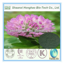 Herb extract powder Isoflavones Red Clover P.E.