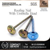 New design roofing screw nails with plastic caps roofing nails with colorful umbrella head