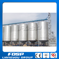 Large hopper bottom steel silo with steel cone and steel structures