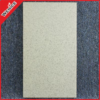 20x40cm factory price foshan tile flooring