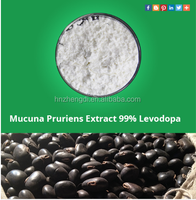 Herbal sex products Mucuna Pruriens Extract 98% L-dopa