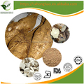Medical raw 100% natural herb radix pueraria mirifica extract photos