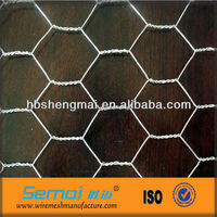 China metal hot dipped electro galvanized double twisted animal cage fence hexagonal gabion wire mesh factory price