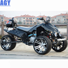 AGY amazing choice 250cc three wheel atv