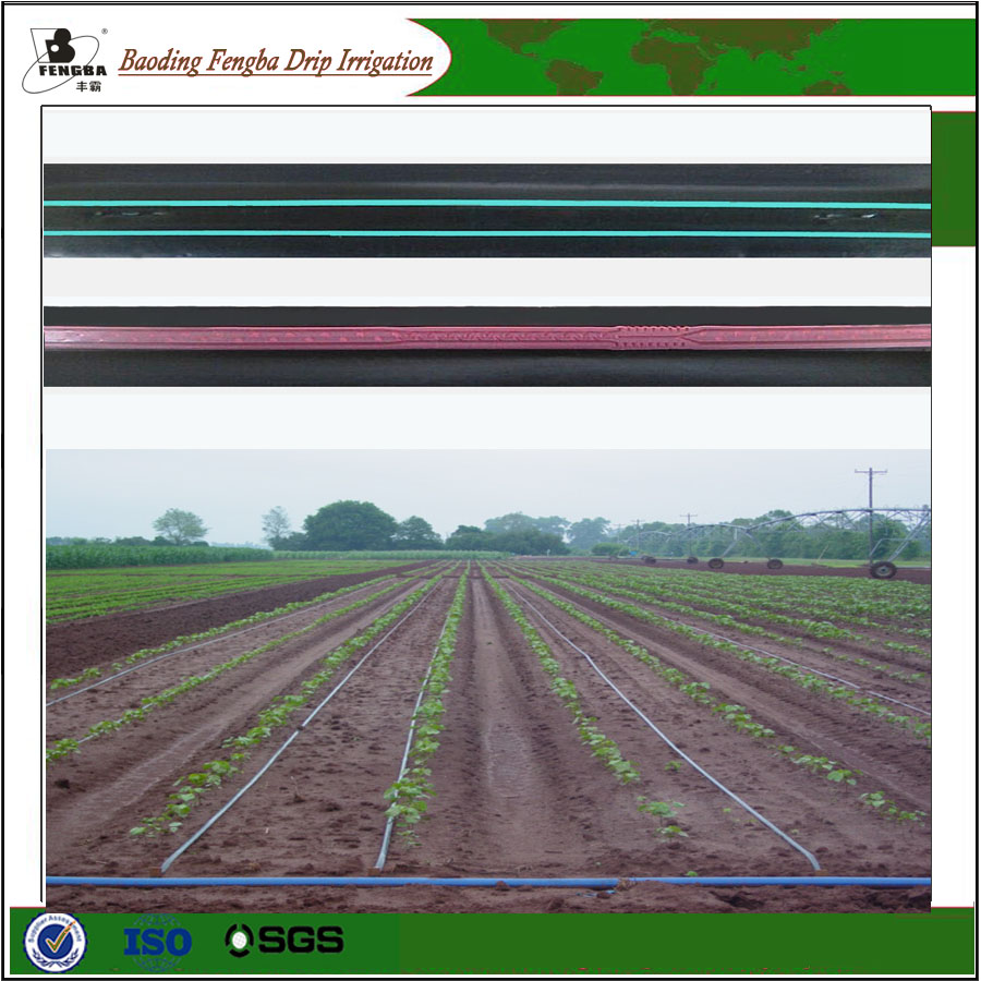 Top One Brand Agriculture Fetigation Drip Lateral Tapes/drip irrigation