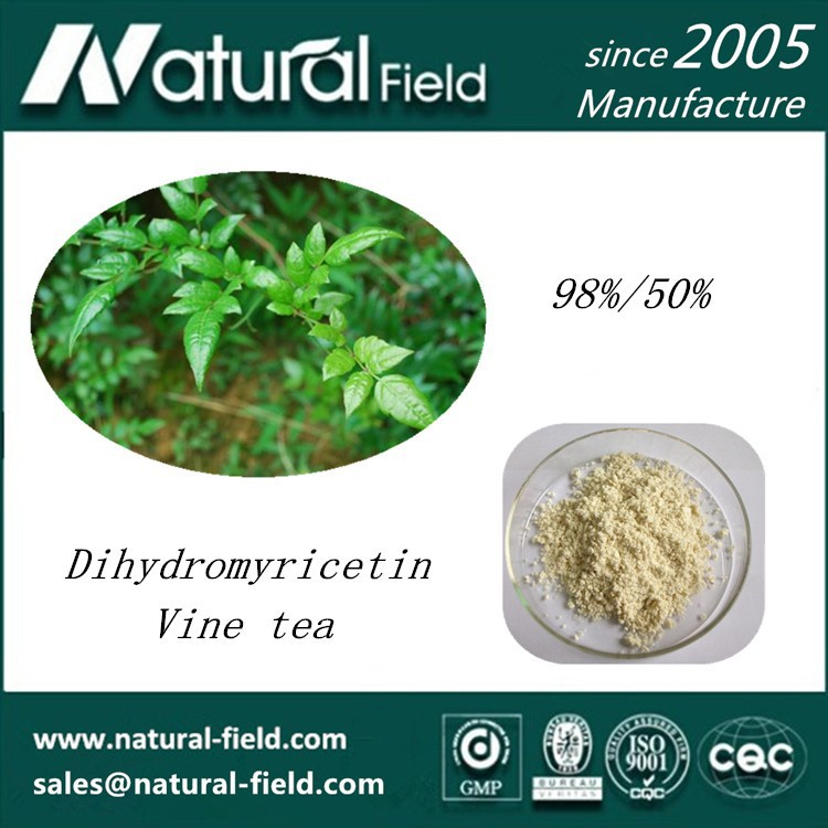 Handling 20 tons raw material vine tea extract powder dmy 98%